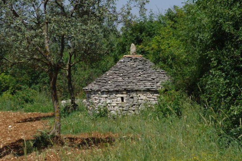 Истарских каджун
