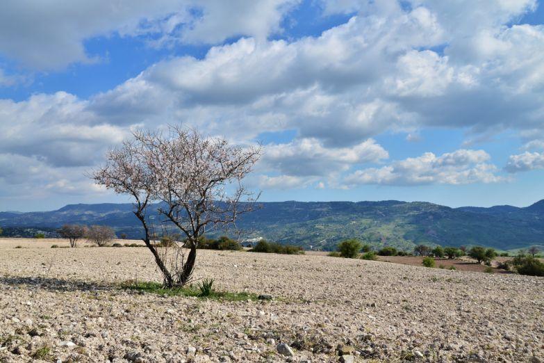 Природа Кипра
