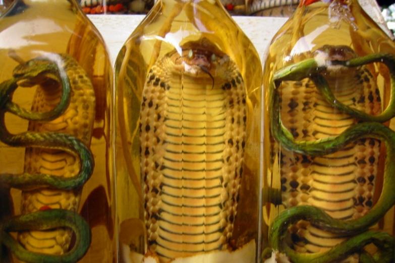 Масло со змеей