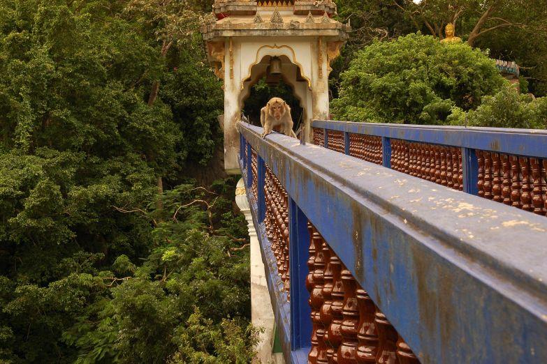 Мост к горному храму