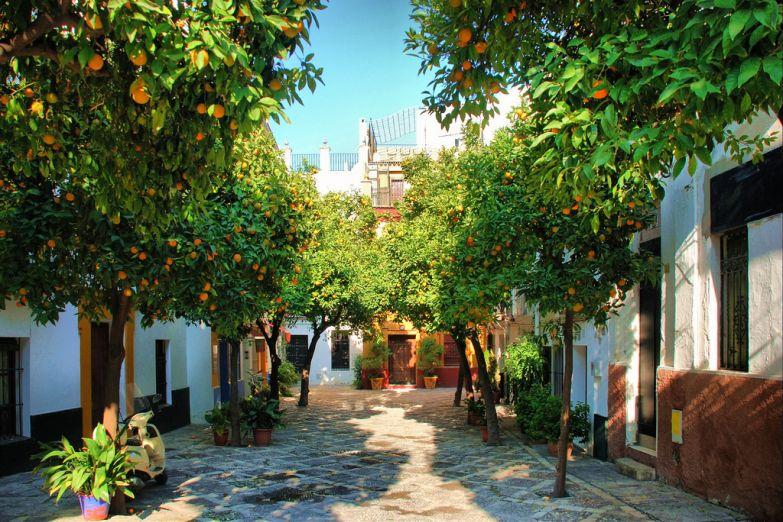 Патио (внутренний дворик) в Севилье