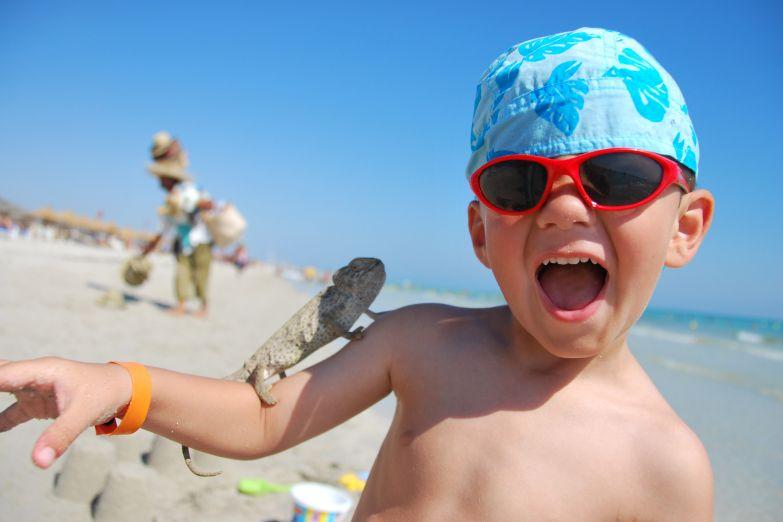 Маленький обитатель пляжа