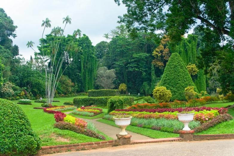 Королевский ботанический сад в Перадении