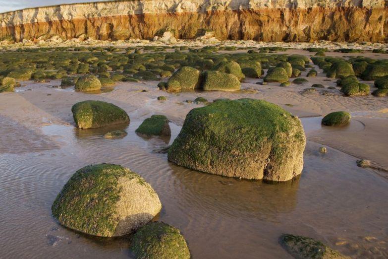 Меловые скалы к города Ханстентон в Нордфолке