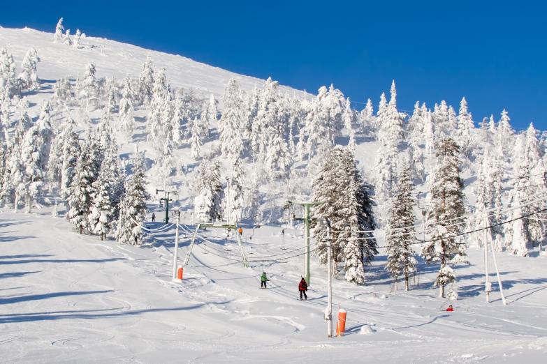 Зимний горнолыжный спуск