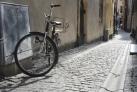 Один из многочисленных велосипедов