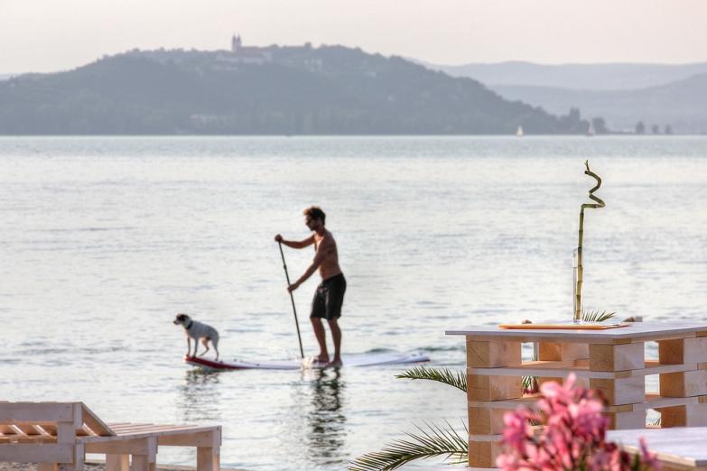 Серфингист с собакой