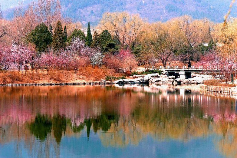 Начало весны в Ботаническом саду Пекина