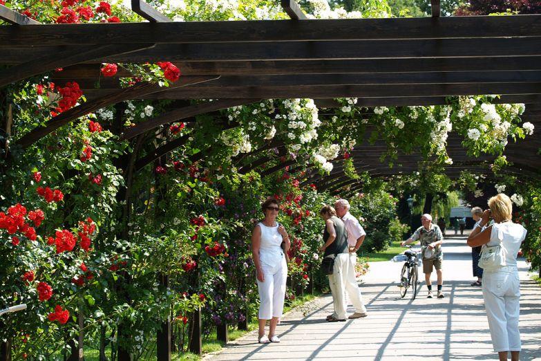 Туристы в розарии Бадена