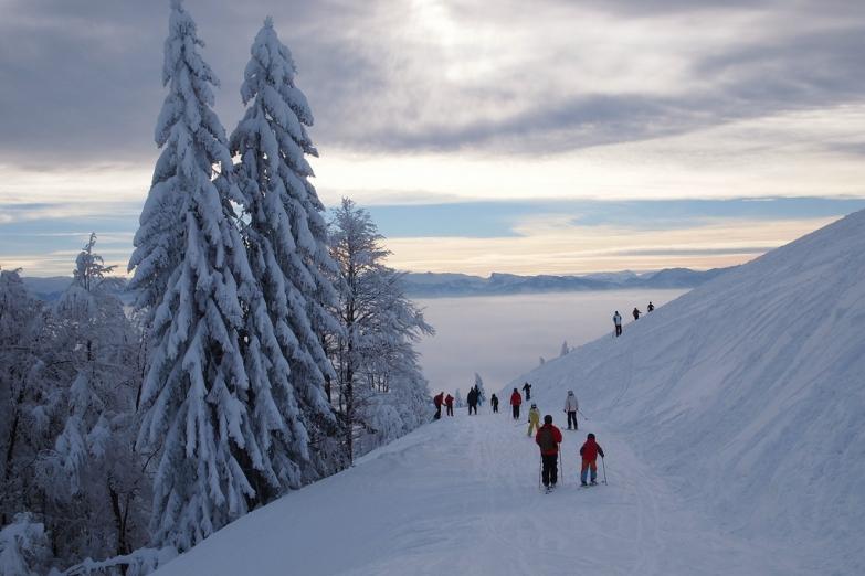 Семейное катание на лыжах