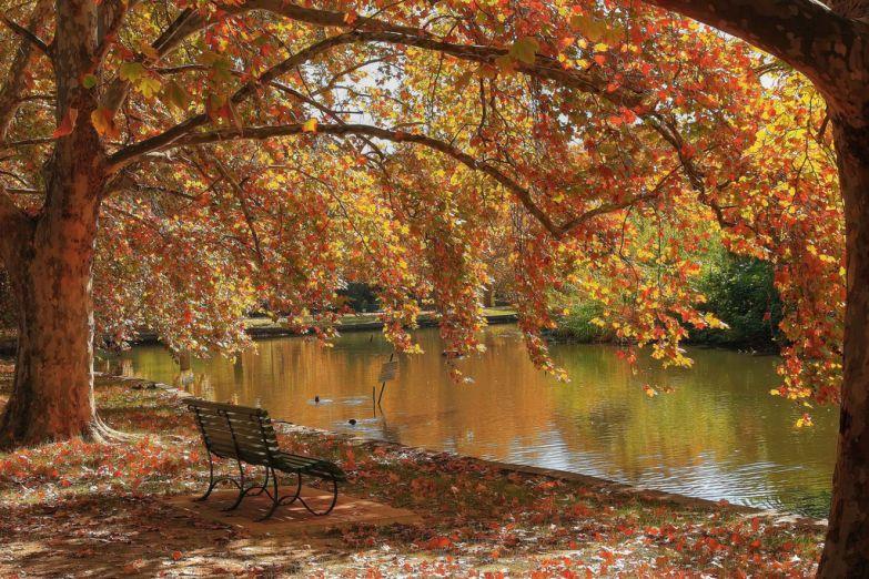Тихий и прекрасный Гайд парк