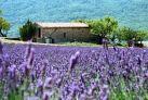 Природа Прованса