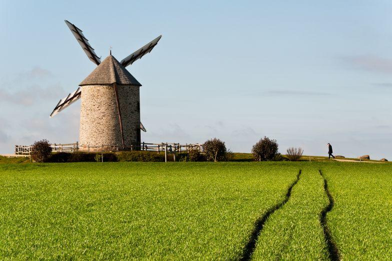 Поля Нормандии
