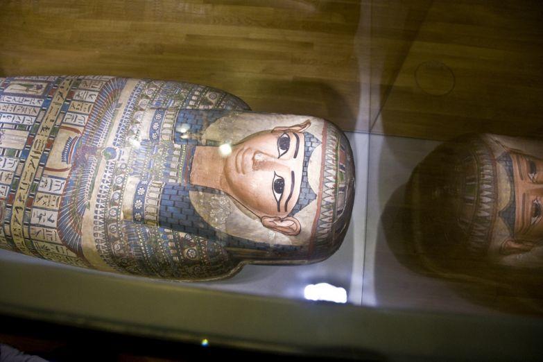 Мумия в Хантерианском музее