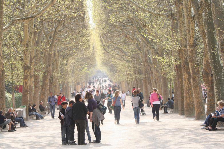 Один из французских парков
