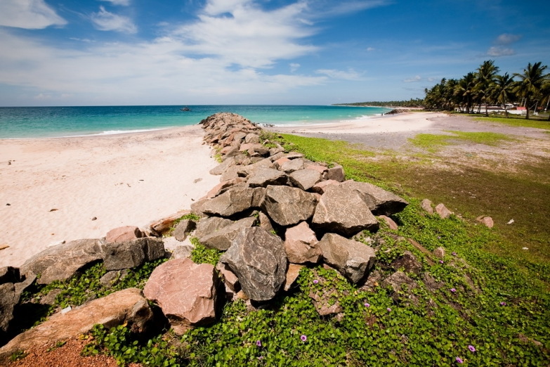 Прибрежный пейзаж
